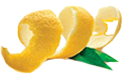 Zesty Digital Marketing Logo